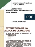 Semana 2. Descripción microscópica y macroscópica de la madera