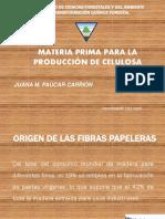 Caract mat prima.pdf