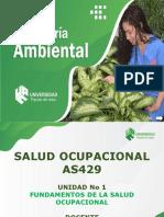 AS429 - Salud Ocupacional.pdf
