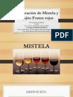 Elaboración de Mistela y Mojito Frutos rojos-1