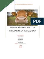 situación del sector primario en paraguay