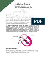 Laboratorio de Fisiología Guía 7