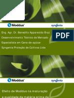 Maturador - SYNGENTA.pdf