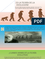 TEORÍA EVOLUTIVA.pptx