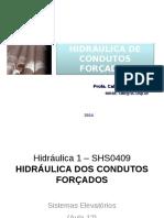 Aula12_SHS409_2014.pdf