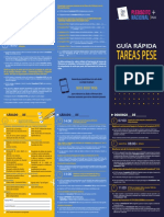 Triptico PESE - Plebiscito 2020.pdf