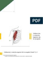 Técnicas de valoración de la cintura escapular y extremidad superior