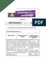 FORMATO ECOSISTEMAS ANTROPIZADOS-2020-2