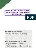 tinciones_histologicas_2_