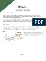 Melanin in the Body.pdf