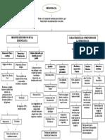 Mapa Mental Constitucion Civica