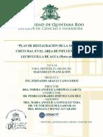 Tesis PLAN DE RESTAURACIÓN DE LA SABANA DE CHETUMAL EN EL ÁREA DE INFLUENCIA DE LA LECHUGUILLA DE AGUA.pdf