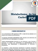 U1. Metabolismo  de Carbohidratos.pdf