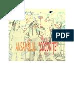 ansamblul coconite 1