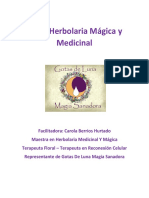 Taller-Herbolaria-Medicinal-y-Magica-completo