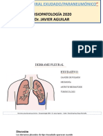 derrame pleural 2020 fisiopatologia exudados paraneumonico zoom.