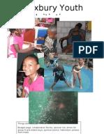 Roxbury Youth Initiative Final Report 2010