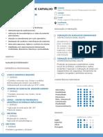 Curriculum Celso Almeida Editavel.pptx