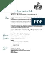 Curriculum_Aziendale.docx
