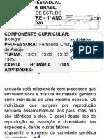 ROTEIRO 1 ANO R8.docx