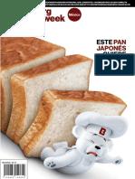 RevistaFASTBBW56.pdf