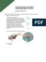 ACTIIDAD 2 DE BIOLOGIA