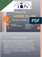 Flash+presentation1
