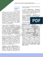 PIEZAS MAYORES.pdf