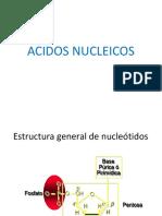 CAPITULO 5. ACIDOS NUCLEICOS.pdf