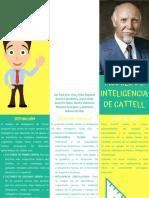 brochure diferencias