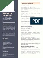 CV-Maria_Emilia_Arrascue.pdf