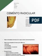 cementoradicular-090404221812-phpapp02