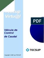 VAL. CONTROL CAUDAL 2
