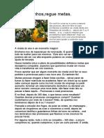 2012-01 - Plante sonhos, regue metas.docx