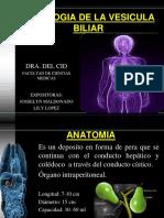 vesiculabiliar-140208232012-phpapp02.pdf