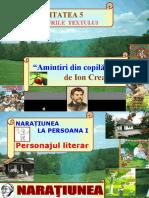 amintiri personajul literar