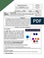 Guía Académica 10º - CELULAS MADRES