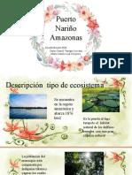 Puerto Nariño Amazonas
