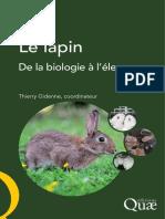 extrait_le-lapin