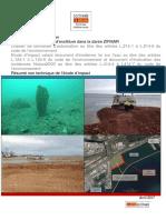 170328 - ZIFMAR - RnT.pdf