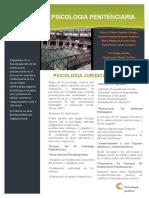 ARTICULO PENITENCIARIO.docx