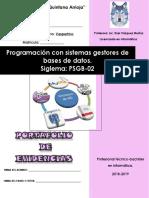 portafolio-psgb-02-n.pdf