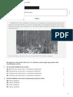 teste1 (10).docx