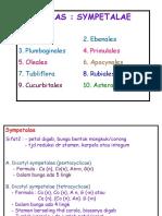 Sympetalae