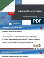 Organização dos Ambientes.pdf