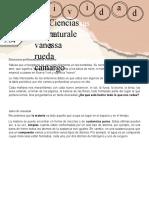 Guía N° 07 Naturales