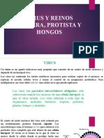 VIRUS Y REINOS MONERA, PROTISTA Y HONGOS