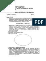 TRABAJO PRACTICO Nº 2_CPJ_2019
