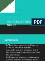 Enfermedades Metabólicas.pptx