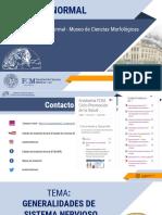 6. GENERALIDADES DE SISTEMA NERVIOSO 2020.ppsx